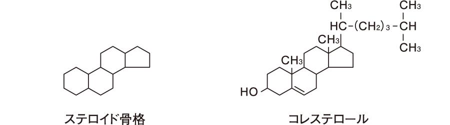 ステロイド骨格およびコレステロールの化学構造