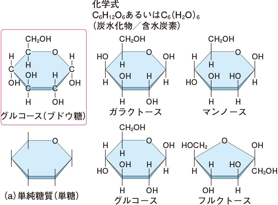 単糖の化学構造