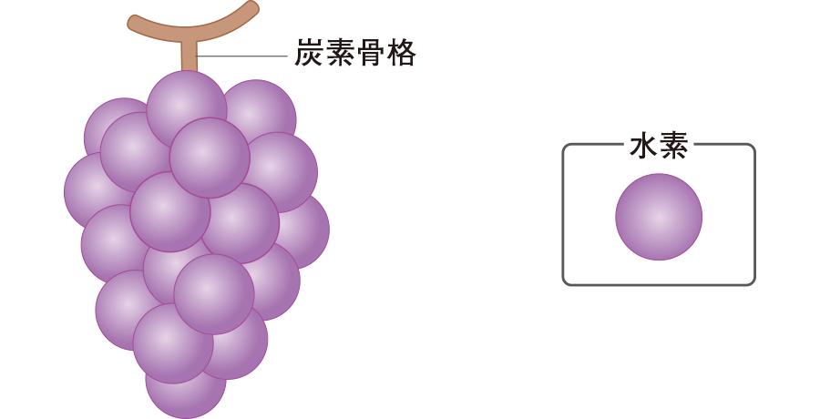 炭化水素とブドウ糖の関係