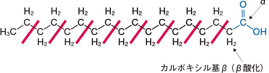 鎖式炭化水素基