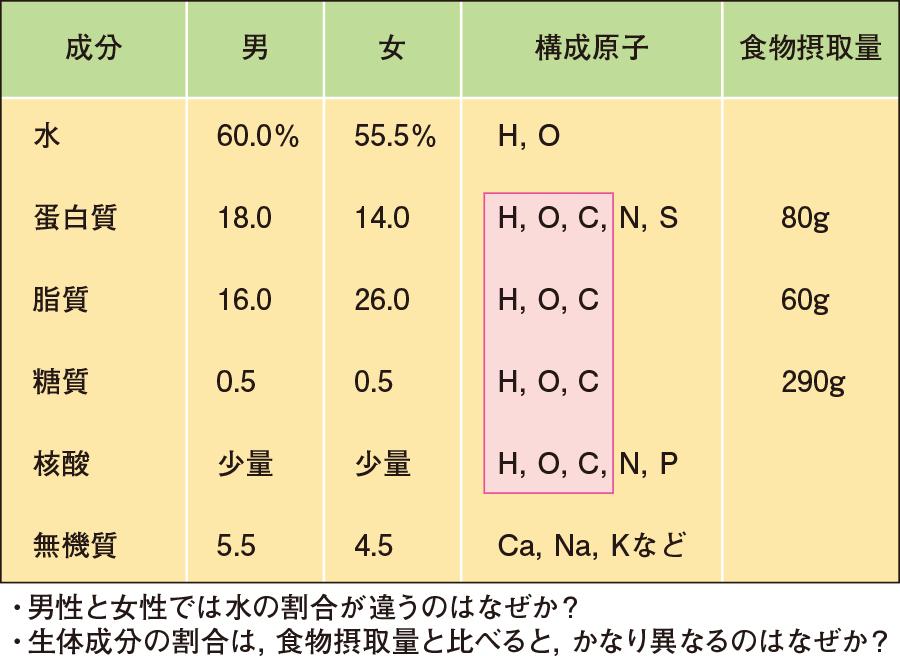 ヒトの構成物質と構成原子