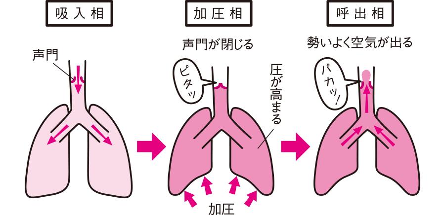 咳のメカニズム