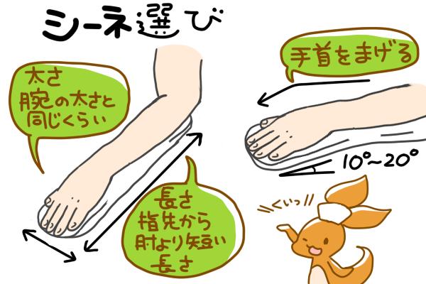 シーネ選びのポイントをまとめた図。ポイントは、1.腕と同じくらいの太さ 2.指先から肘の手前までの長さ である。