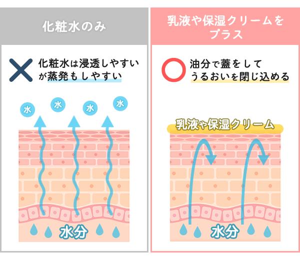 化粧水のみで保湿した肌と乳液やクリームで保湿した肌で内部から蒸発する水分の違いを比較したイラスト