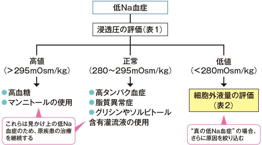 症 看護 低 ナトリウム 血