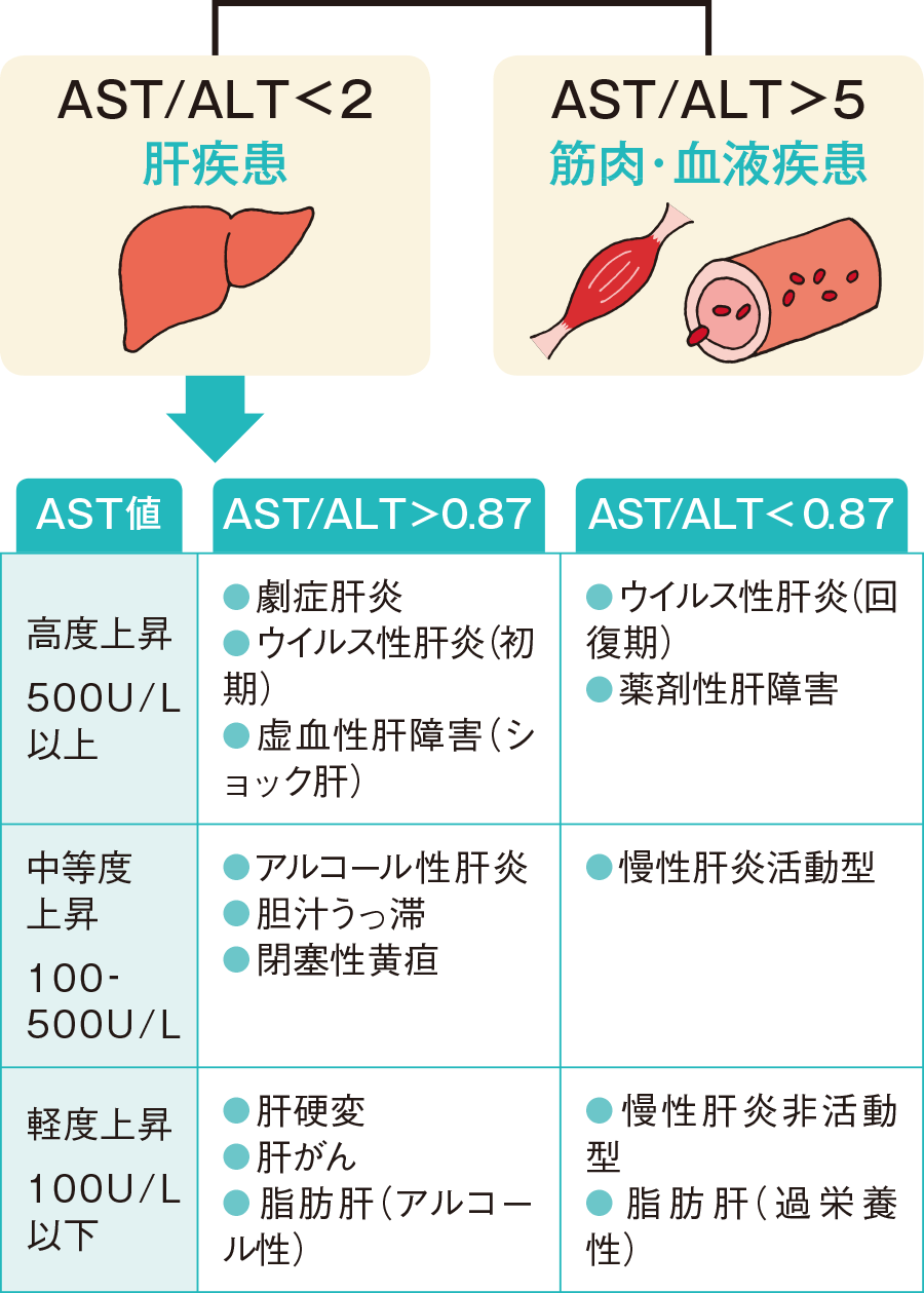 AST/ALT比による分類