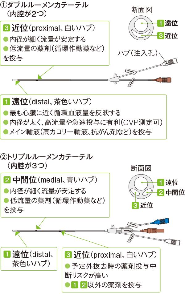 マルチルーメンカテーテルの構造