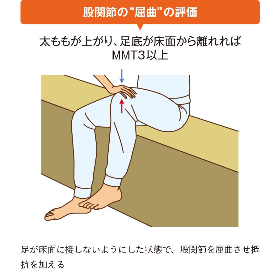 """股関節の""""屈曲""""の評価"""