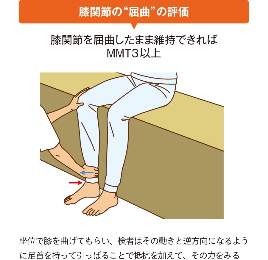 """膝関節の""""屈曲""""の評価"""