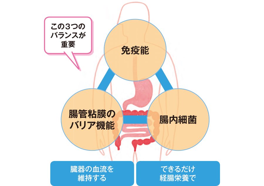 バクテリアルトランスロケーションへの対応