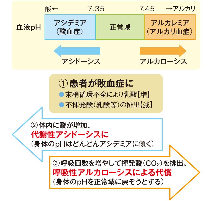 敗血症での酸塩基平衡の例
