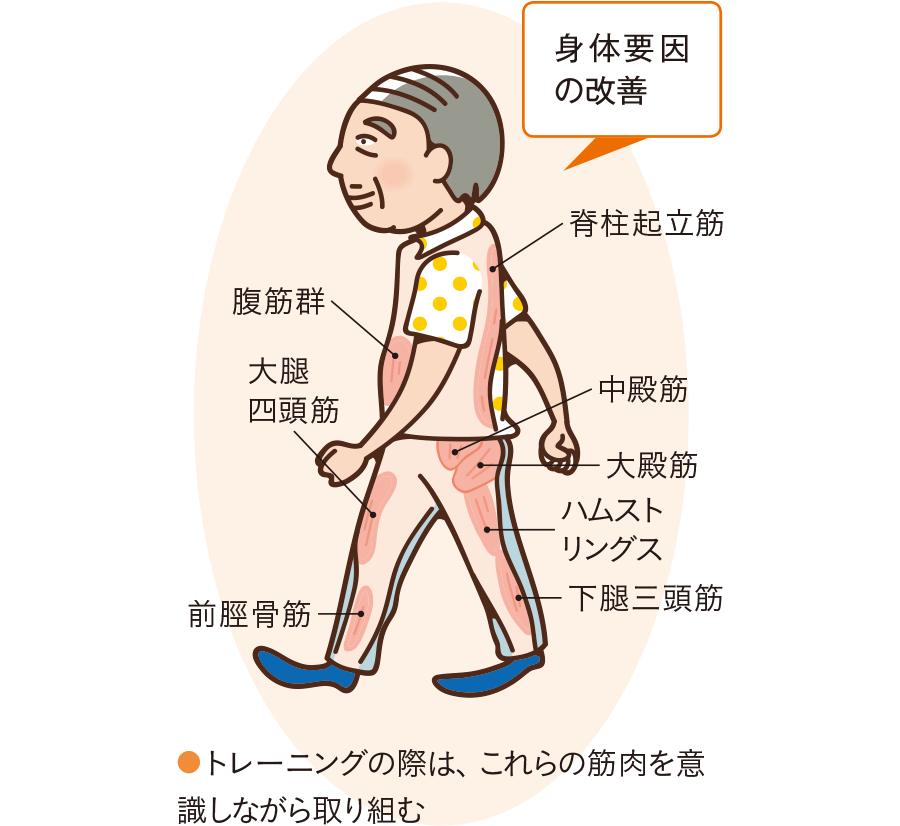 歩行に必要な筋肉