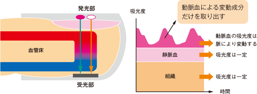 パルスオキシメータの測定原理