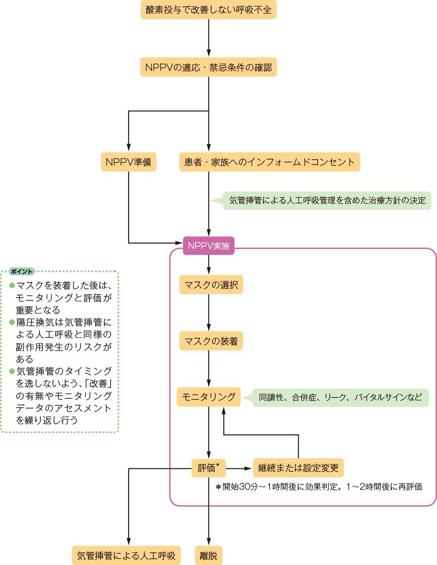 NPPV導入の流れ