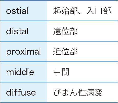 冠動脈でよく使われる用語