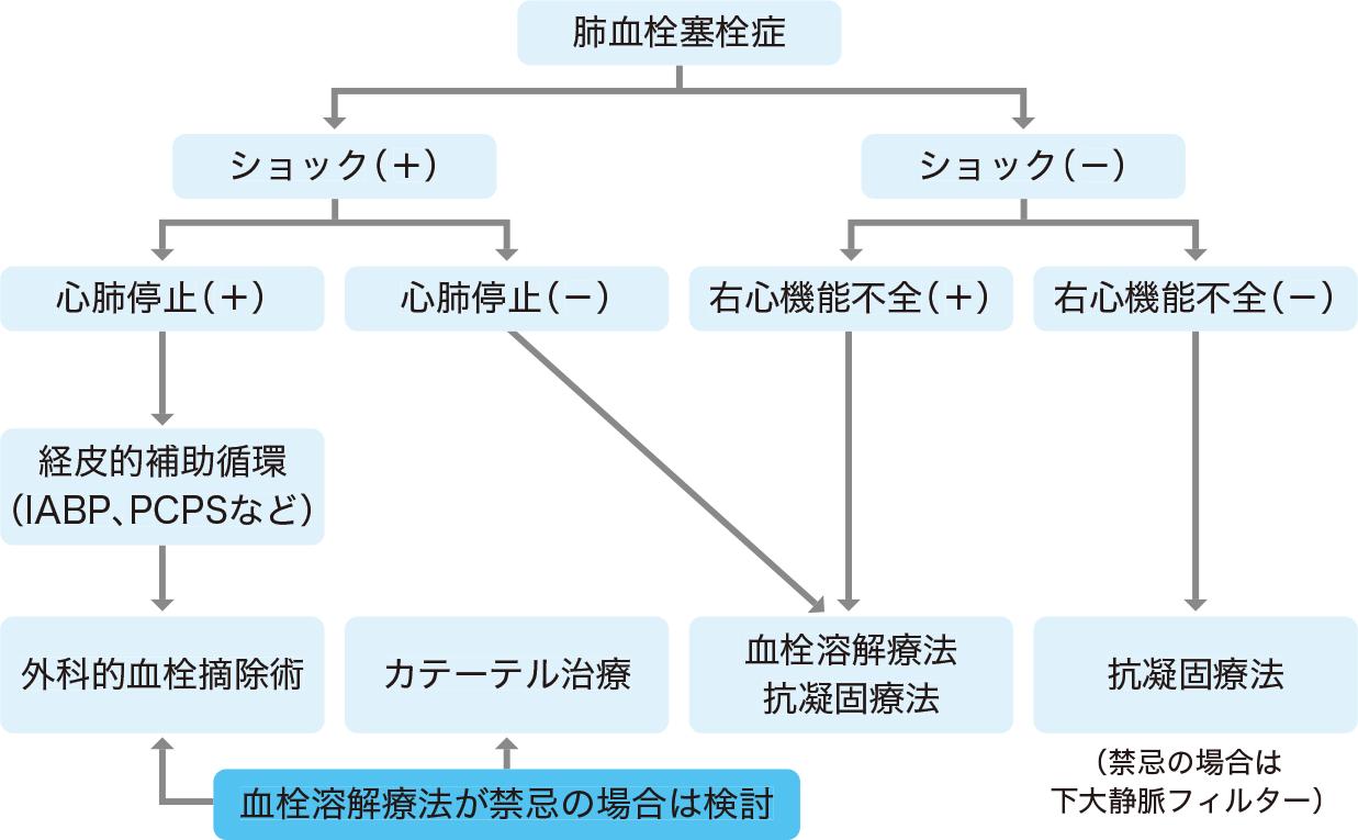 肺血栓塞栓症の治療の決定