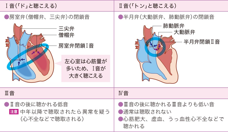 心音の種類