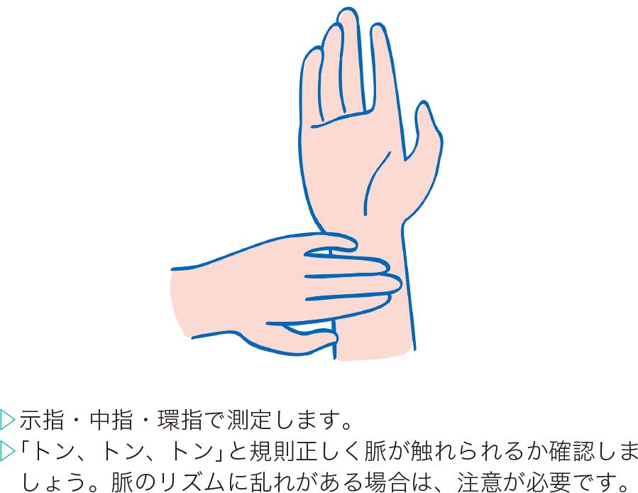 検脈のポイント