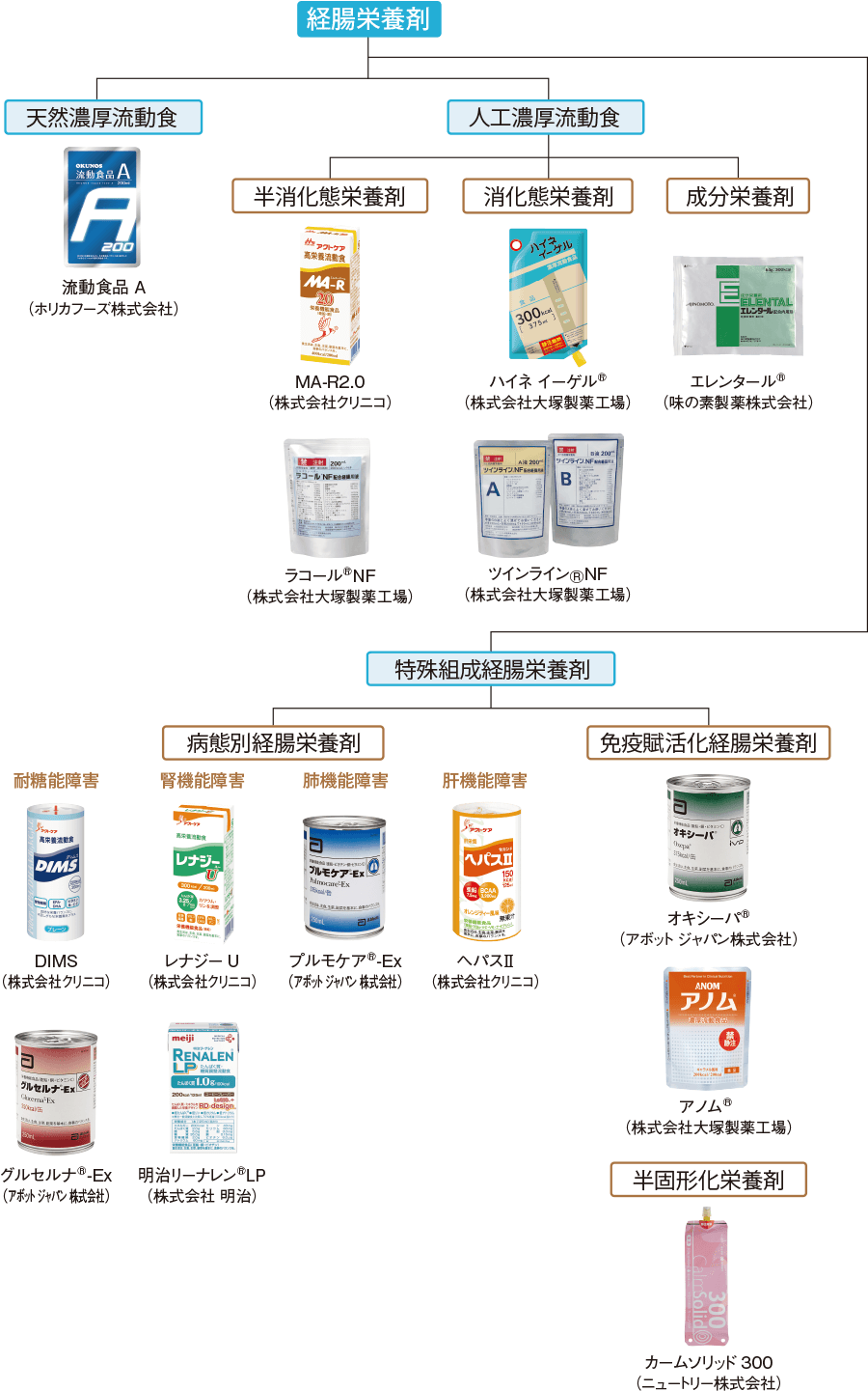 経腸栄養剤の分類