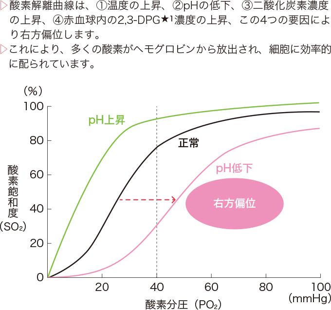 酸素解離曲線の右方偏位