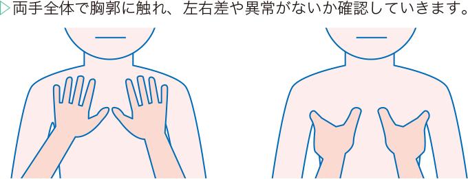 胸郭の触診方法