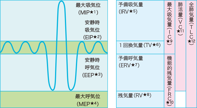 肺気量分画(スパイログラム)