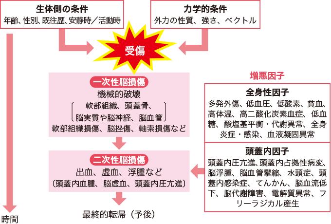 図2一次性脳損傷と二次性脳損傷