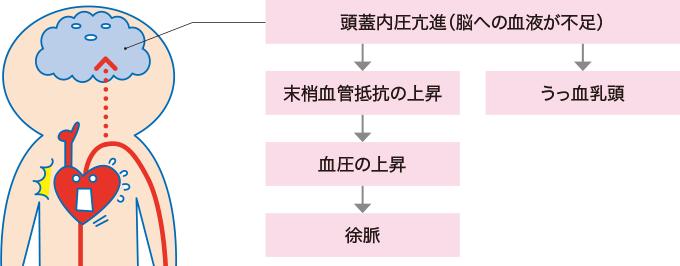図2クッシング現象