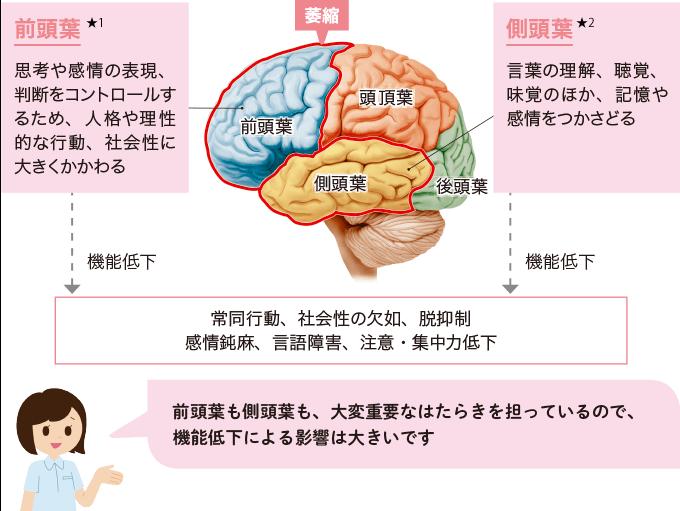 図1前頭側頭型認知症の病態