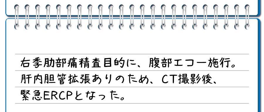 記入例②:肝内胆管拡張がある場合