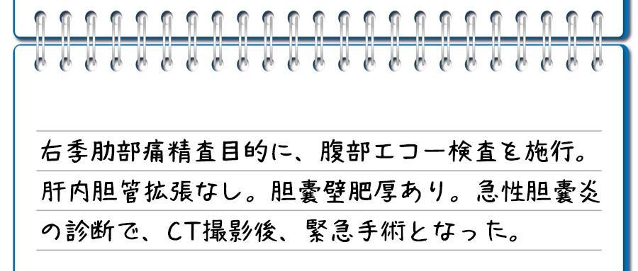 記入例②:胆嚢壁肥厚がある場合