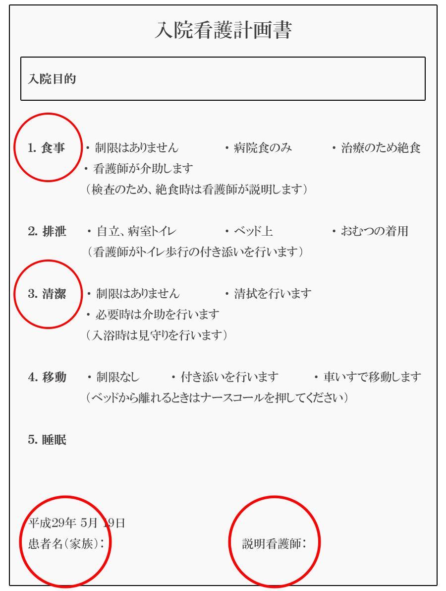 入院看護計画書(見本)