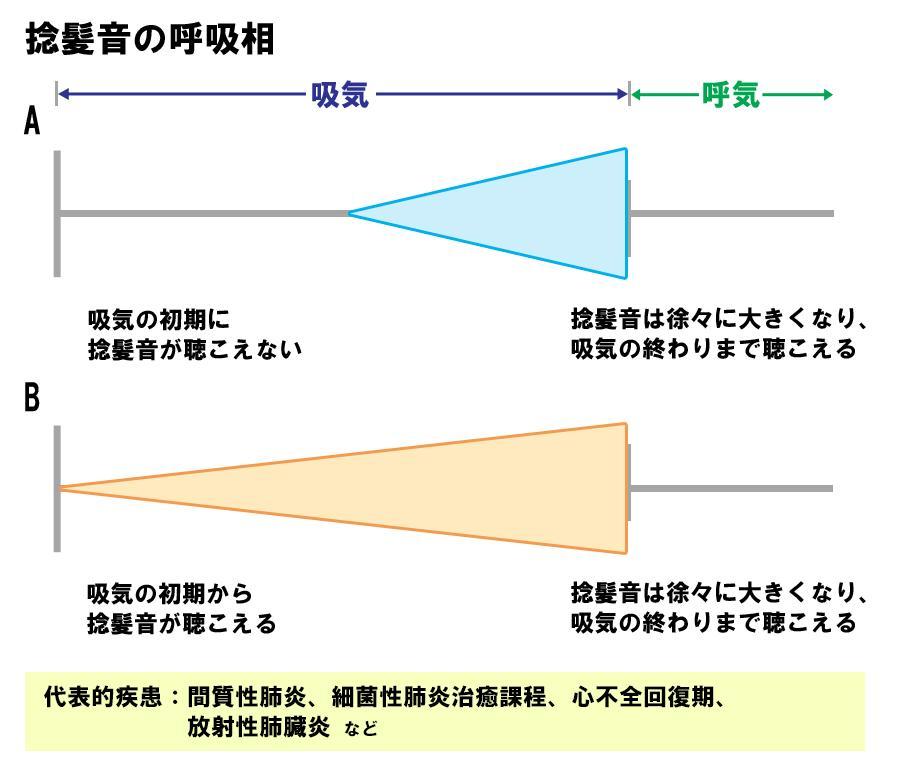 2種類の捻髪音を呼吸相で分類