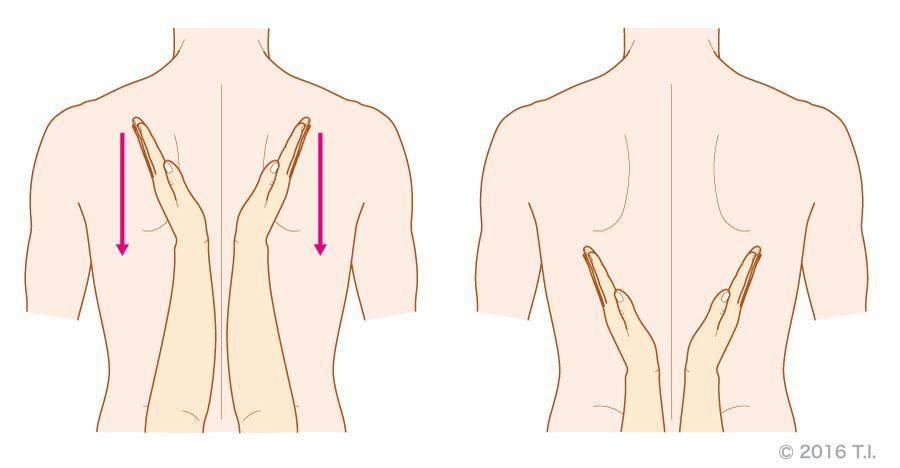 胸郭振盪のイメージ