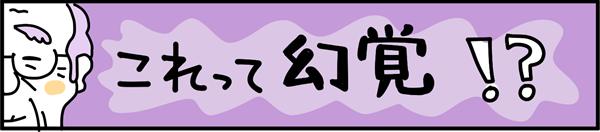 タイトル:これって幻覚!?