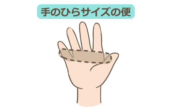 手のひらサイズの便