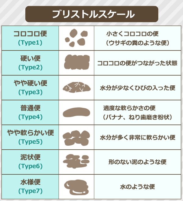 【ブリストルスケール】コロコロ便(Type1):小さくコロコロの便(ウサギの糞のような便)、硬い便(Type2):コロコロの便がつながった状態、やや硬い便(Type3):水分が少なくひびの入った便、普通便(Type4):適度な軟らかさの便(バナナ、練り歯磨き粉状)、やや軟らかい便(Type5):水分が多く非常に軟らかい便、泥状便(Type6):形のない泥のような便、水様便(Type7):水のような便