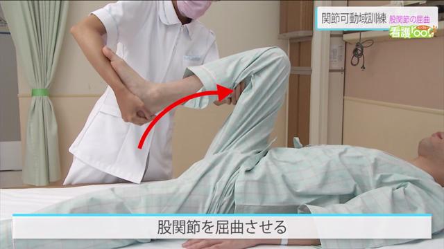 股関節の屈曲 | 関節可動域訓練【20】