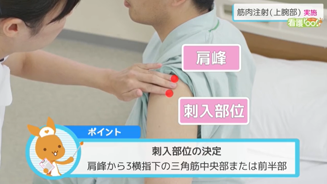 ポイント 刺入部位の決定 肩峰から3横指下の三角筋中央部または前半部
