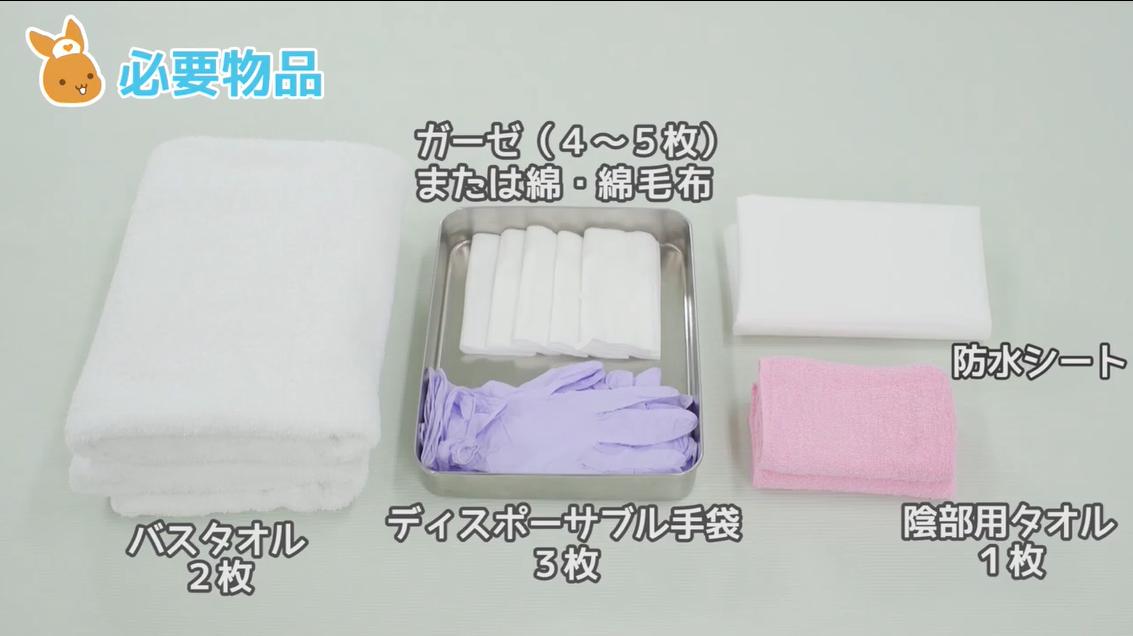 ガーゼ(4~5枚)または綿・綿毛布 防水シート 陰部洗浄タオル(1枚) ディスポーザブル手袋(3枚) バスタオル